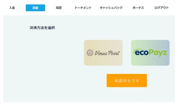 カジノシークレット出金ecoPayz(エコペイズ)